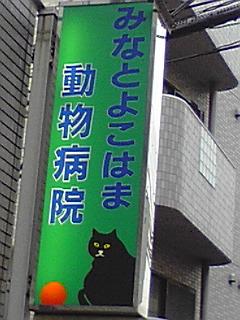 091209_1556~01.jpg