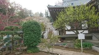 DSC_0042 西林寺.jpg