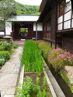 海蔵寺2.JPG