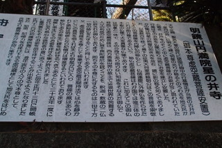 P3014436.jpg